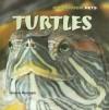 Turtles - Joanne Randolph