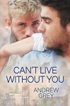 Can't Live Without You - Andrew Grey