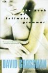 The Book of Intimate Grammar - David Grossman, Betsy Rosenberg