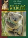 A Souvenir of Australian Wildlife - Steve Parish