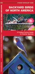 Backyard Birds of North America: A Folding Pocket Guide to Familiar Species - James Kavanagh, Raymond Leung