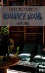 Love You Like a Romance Novel (Missing Butterfly) - Megan Derr