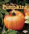 Pumpkins - Robin Nelson