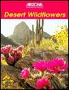 Desert Wildflowers - Ray Shubinski, Gary Paul Nabhan