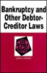 Bankruptcy and Other Debtor-Creditor Law in a Nutshell (In a Nutshell (West Publishing)) - David G. Epstein