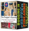 The Prepper's Bundle: Even More Survival Guides for Every Situation - Robert Paine
