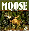 Moose for Kids - Jeff Fair, Sandy Stevens, Michael Harlowe Francis