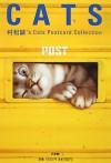 CATS: 村松誠's Cats Postcard Collection - Makoto Muramatsu