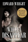 While I Disappear (A John Ray Horn Thriller) - Edward Wright
