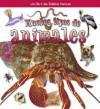 Muchos Tipos de Animales - Molly Aloian, Bobbie Kalman