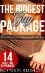 The Biggest Gay Package (14 Book Steamy Collection of First Time MM Romance) - Brandon Redstone