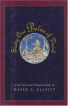 Sixty-One Psalms of David - David R. Slavitt