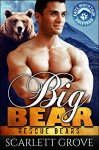 Big Bear (Bear Shifter Paranormal Romance) (Rescue Bears Book 3) - Scarlett Grove