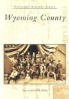 Wyoming County (PA) (Postcard History Series) - Sean Billings, Johanna Billings