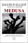 Medusa (Deutsche Version) (German Edition) - David P. Elliot