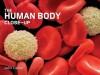 The Human Body Close-Up - John Clancy