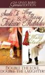 Santa Fe Fortune and How to Marry a Matador - Ginny Baird