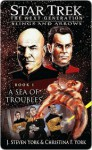 Star Trek The Next Generation: Slings and Arrows, Book 1: A Sea of Troubles - J. Steven York, Christina F. York