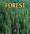 Forest - Sheila Rivera
