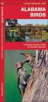 Alabama Birds: A Folding Pocket Guide to Familiar Species - James Kavanagh, Raymond Leung
