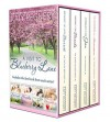 A Visit to Blueberry Lane: a collection of four complete novels - Katy Regnery