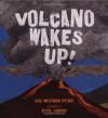 Volcano Wakes Up! - Lisa Westberg Peters, Stephen W. Jenkins