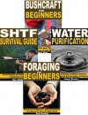 Bushcraft Survival 4-Box Set: Bushcraft for Beginners, Foraging for Beginners, SHTF Survival Guide, Water Purification - Dave Allen, Lars Anderson, Dan Walker, James Brooks