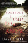 Somebody I Used to Know - David J. Bell