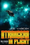 Strangers in Flight - Joe Vasicek