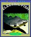 Electric Fish - Elaine Landau