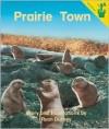 Prairie Town - Ryan Durney