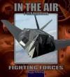 Nighthawk F-117A (Fighting Forces in the Air) - Lynn M. Stone