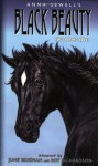 Black Beauty: The Graphic Novel - June Brigman, Anna Sewell, Roy Richardson