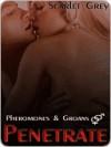 Penetrate [Pheromones and Groans Book 1] - Scarlet Grey