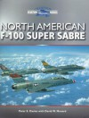 North American F-100 Super Sabre - Peter E. Davies