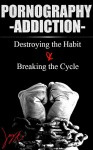 Pornography Addiction: Destroying the Habit & Breaking the Cycle - Jay Anthony