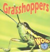 Grasshoppers - Heather C. Hudak