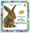 Baby's Very First Little Book of Bunnies - Antonia Miller, Katrina Fearn, John Russell