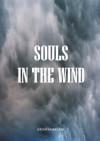 Souls In The Wind - Jeremy Mark Lane