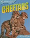 Cheetahs - Sally Morgan