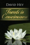Travels in Consciousness - David Hey
