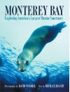 Monterey Bay: Exploring America's Largest Marine Sanctuary - Michael Rigsby, Michael Rigsby
