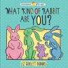 What Kind of Rabbit Are You? (Preschool Pop-Ups) - Liz Goulet Dubois