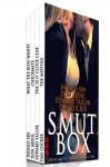 Smut Box (Dirty Smut Fantasies Box Set) - Indigo Sin, Don Abdul, Edward Tailor, Dan Cocker