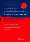 Properties of Water and Steam / Zustandsgraaen Von Wasser Und Wasserdampf: The Industrial Standard Iapws-If97 for the Thermodynamic Properties and Sup - Wolfgang Wagner