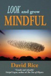 Look and Grow Mindful - David Rice