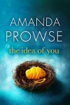 The Idea of You - Amanda Prowse