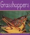 Grasshoppers - Cheryl Coughlan