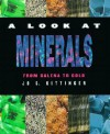 Look at Minerals: From Galena to Gold - Jo S. Kittinger