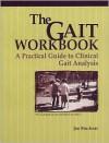 The Gait Workbook: A Practical Guide to Clinical Gait Analysis - Jan Bruckner